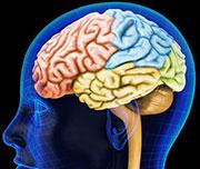 Retraso Mental y la Integración