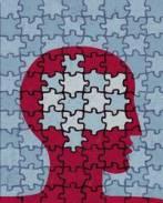 puzzle cerebral